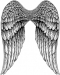 ANGEL WINGS   (1067)