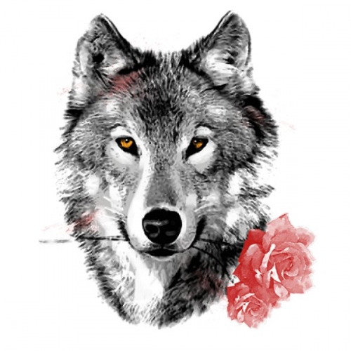 WOLF WITH CARNATION