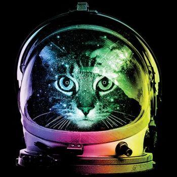 HUPPARIMEKKO MUSTA - SPACE CAT (863)