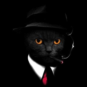 AGENT CAT (754)