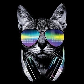 DJ CAT (847)