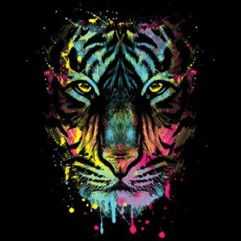 DRIPPING TIGER (858)