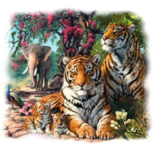 TIGER SANCTUARY (575)