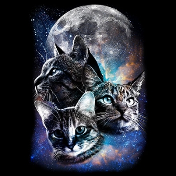 SPACE CATS MOON (494)