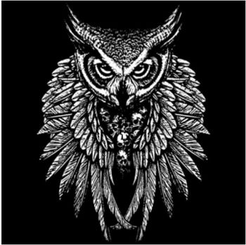 OWL SKULL WINGS (932)