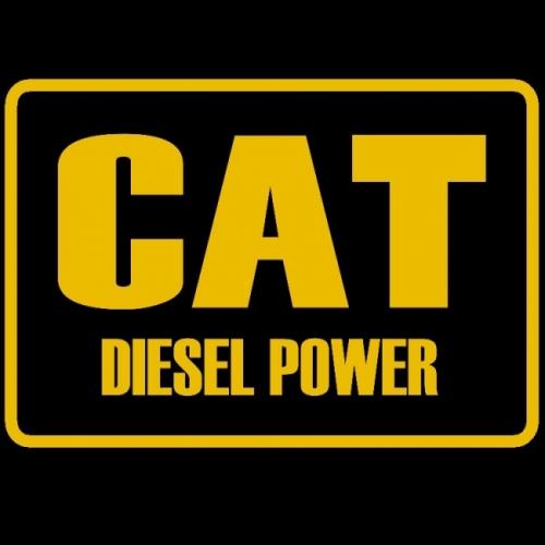 PAINATUS: CAT DIESEL POWER (395)