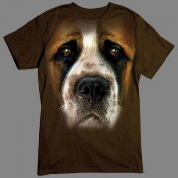 BIG SAINT BERNARD FACE (506)