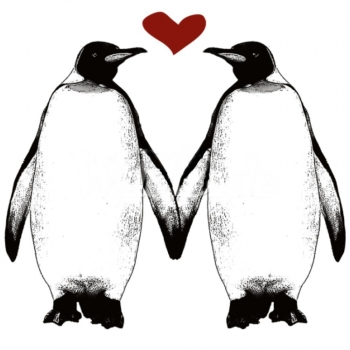 PENGUINS HOLDING FINS HEART (561A)