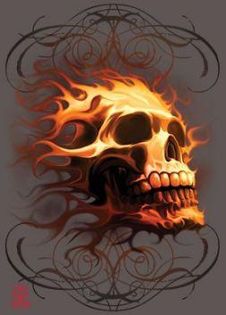 T-PAITA grafiitti - FIRE SKULL (614)
