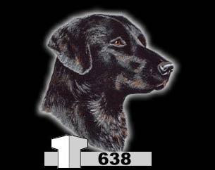 LABRADOR BLACK (638)