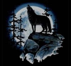 Wolf moon (655)
