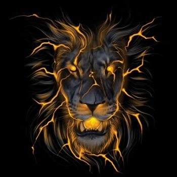 classic COLLEGE MUSTA - LION GLOW (746)