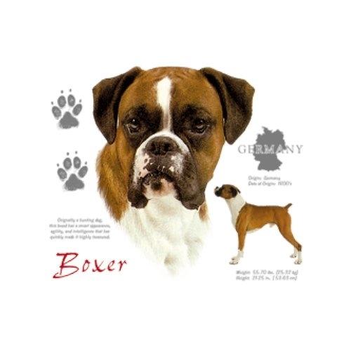 BOXER (7858)