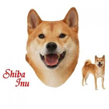SHIBA INU (7865)