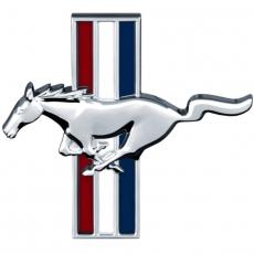 Paitakuvat - Mustang (A1082)