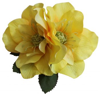 BRIGITTE Double Yellow Hellebore