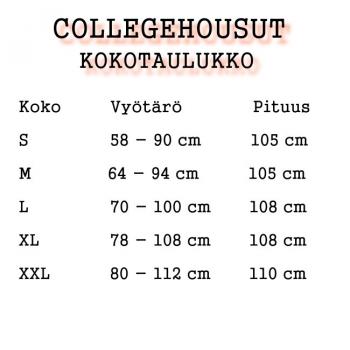 COLLEGEHOUSUT PRK - PERKELE