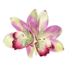GIGI Double Orchid Tropical Hair Flower - Rhubarb