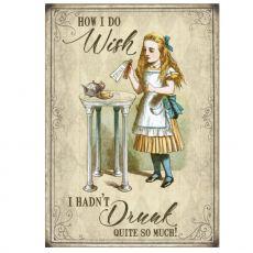 Kilpi - Alice in Wonderland - Wish I hadn't drunk so much