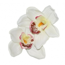 Malina Double Orchid Hair Flower