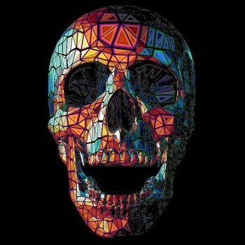 PAITAKUVA - COLOR SKULL
