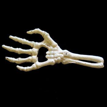 PULLONAVAJA - Skeletal Hand Bottle Opener